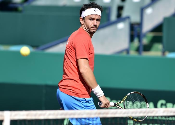 ATP Halle: Mergea ratează trofeul
