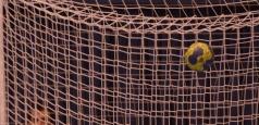 CSM Oradea a doua echipă care spune pas Ligii Naţionale
