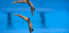 România are un arbitru delegat la Rio, la sărituri în apă